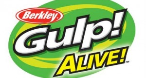 Gulp-alive-logo