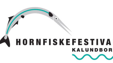 Hornfiskefestival