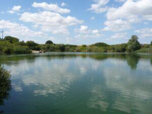 Vanløse fiskesø