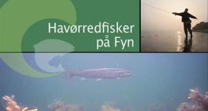 Havørredfiskeri på fyn