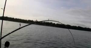 Makrelfiskeri fra båd